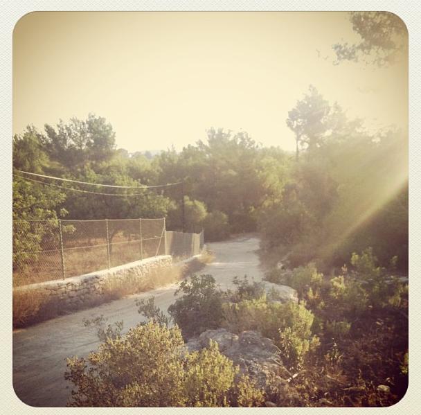 Morning Camino
